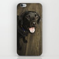 lab iPhone & iPod Skins featuring Black Lab by Every Dog Has a Story