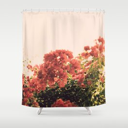 Bouganvillea Morning #3 Shower Curtain