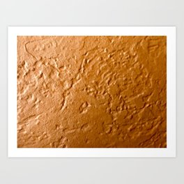 Baked Pumpkin Pie Art Print