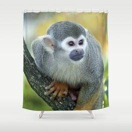 Monkey 004 Shower Curtain