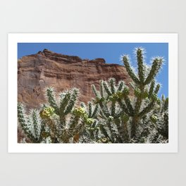 Canyon de Chelly Cholla Art Print