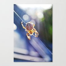 Just Keep Me Hanging On Canvas Print