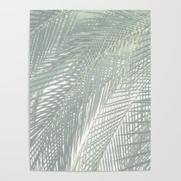 Faded Palm Leaves Poster