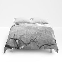 Black and white Grand Canyon Comforters