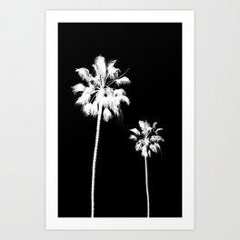 Palm Tree Noir #71 Art Print