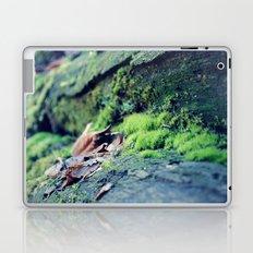 Moss on the Logs Laptop & iPad Skin
