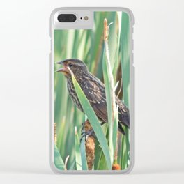 Cattails and the Bird Clear iPhone Case