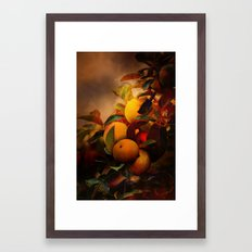 Apples In Fall - A Living Still Life Framed Art Print