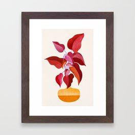 All Grown Up / Tropical Plant Illustration Framed Art Print