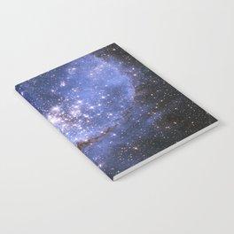 Infant Stars Notebook
