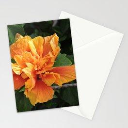 The Golden Double Hibiscus Next Door Stationery Cards