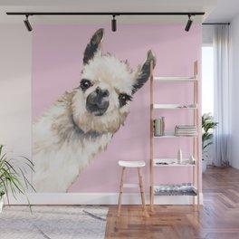 Sneaky Llama Wall Mural