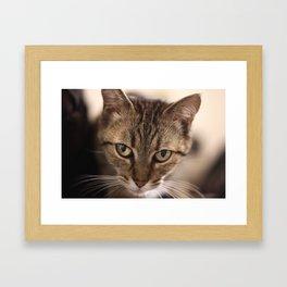 Tanka Framed Art Print