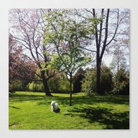 westie Canvas Prints featuring Little Westie by Nina Jankovic