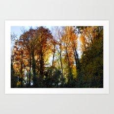 Autumn sunset. Forest Art Print