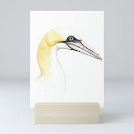 Northern gannet Mini Art Print