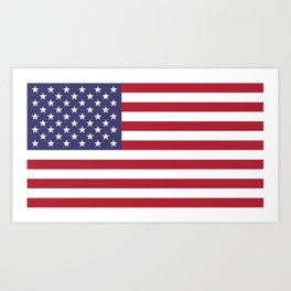 Flag of USA, 10:19 scale prints Art Print