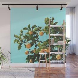 Summer Orange Tree Wall Mural