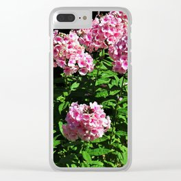 Embrace the Sweetness Clear iPhone Case