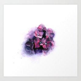Violet blooming hydrangea flowers Art Print