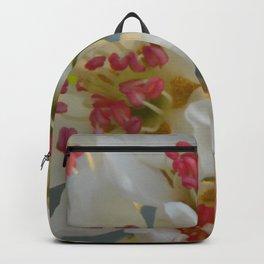 Comice B1 Backpack