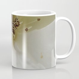 White Water Rose Coffee Mug