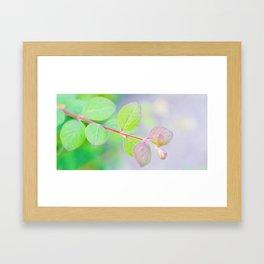 Autumn I Framed Art Print