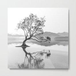 Wanaka Tree New Zealand Nature Photograph Black And White Metal Print