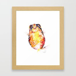 Box Fish Framed Art Print
