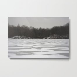 Central Park in Winter Metal Print