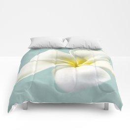 my hope carries me . . . Comforters