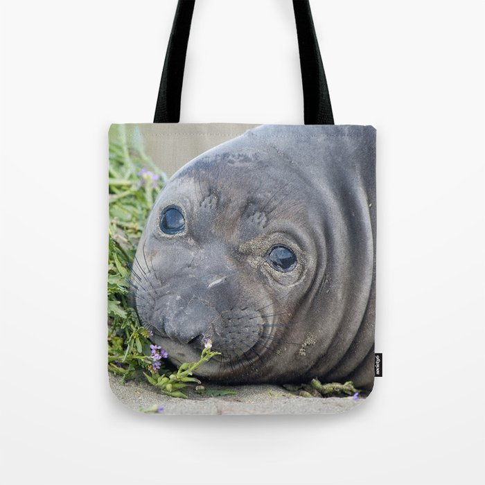 Northern Elephant Seal Pup Tote Bag