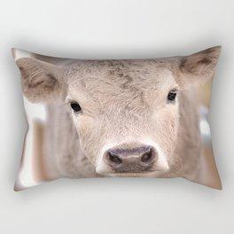 Spring Calf Rectangular Pillow