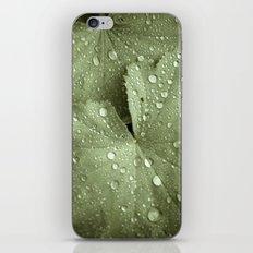 Sunshower Canvas iPhone & iPod Skin