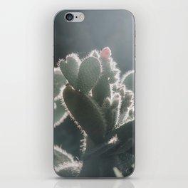 cactus hearts iPhone Skin
