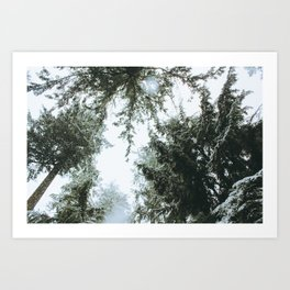 Capilano Tree Tops v.1 Art Print