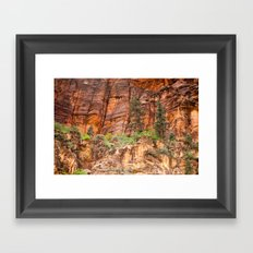 The Narrows, Zion Framed Art Print