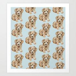 Schnoodle Pups Art Print