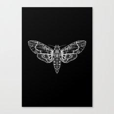The Moth Canvas Print