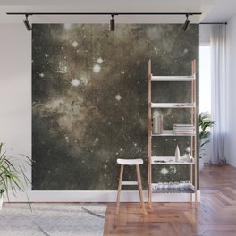 Southwest Space Wall Mural