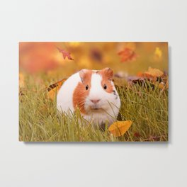 Autumn Cutie Metal Print
