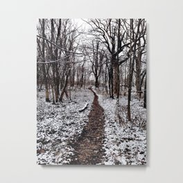 Winter Wanderings Metal Print