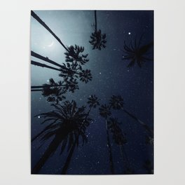Palm Trees, Night Sky, Stars, Moon Poster