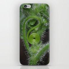 Curly Sue iPhone & iPod Skin