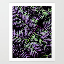 Purple & Green Bracken Art Print
