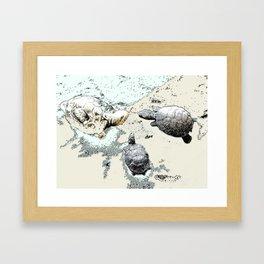 Turtle Caucus Framed Art Print