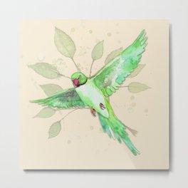 Indian Ringneck Parakeet Metal Print