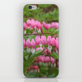 Bleeding Hearts iPhone Skin