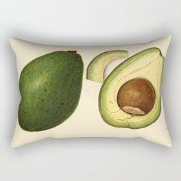 Vintage Illustration of an Avocado 2 Rectangular Pillow