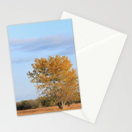 Kansas Fall colors with tree's on the Prairie Stationery Cards